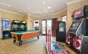 Vista Cay Games Room